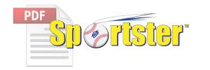 Sportster™